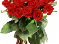Поздравляем Ольгу Николаевну с Днем рождения!